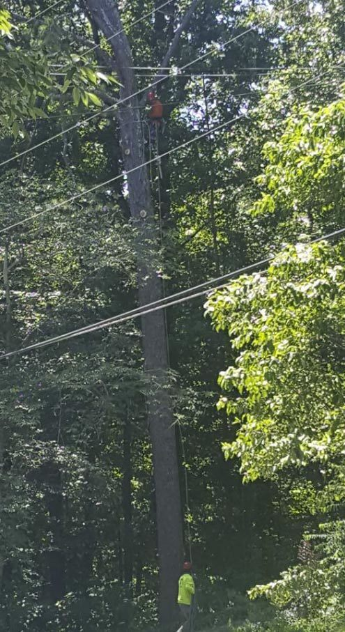 close_to_power_lines_2